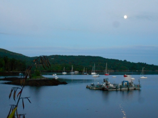 FullMoon Over Bay-1