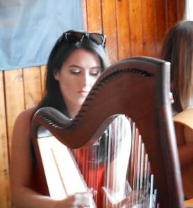 Pub Harpist